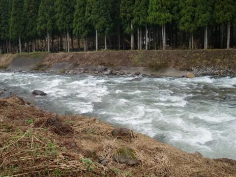 石徹白川DAIWA渓流バトル2011の写真
