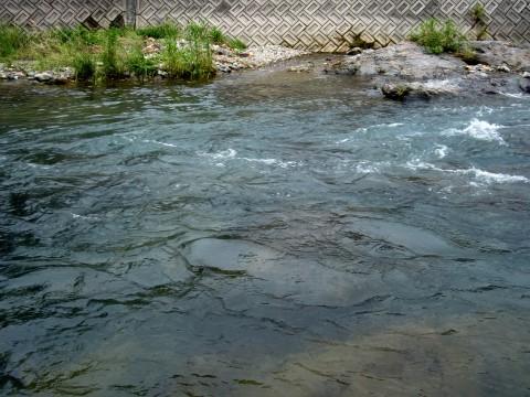 揖保川支流伊沢川の写真