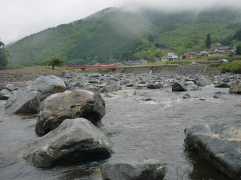 揖保川鮎釣りの写真