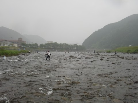 長良川鮎釣り