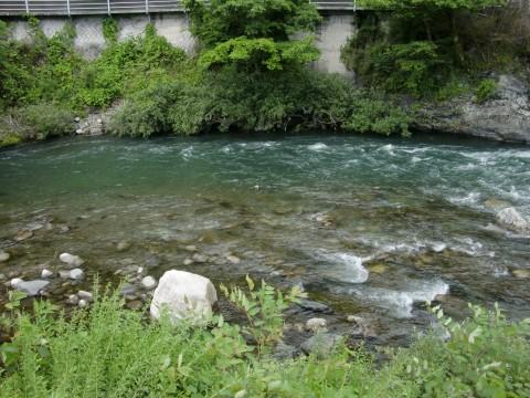 6月25日木曽福島鮎釣り